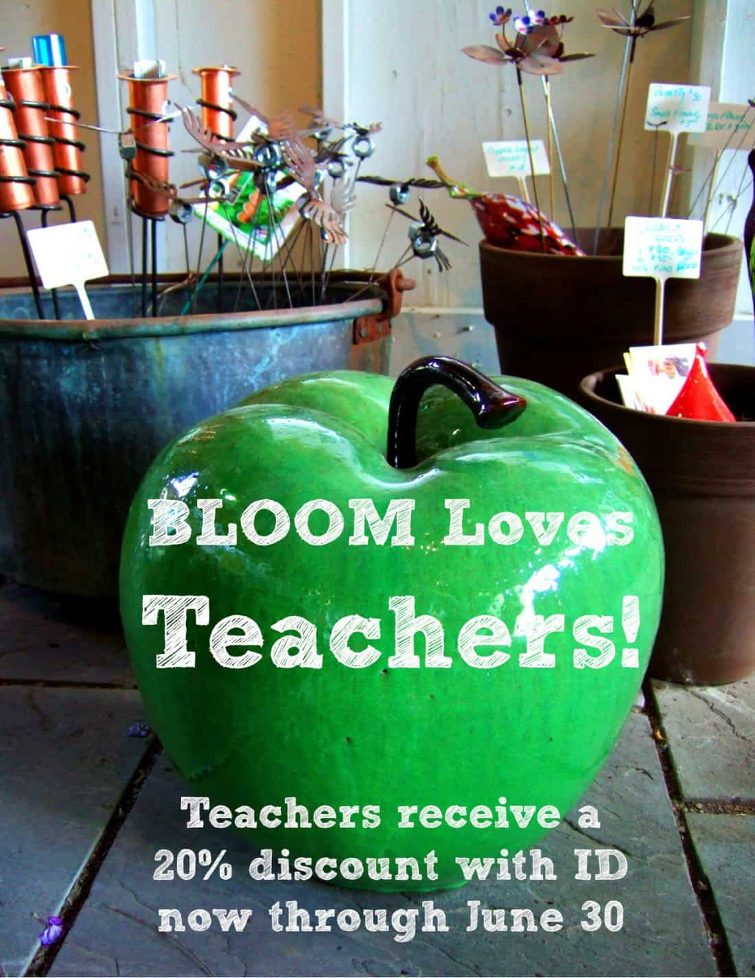 Bloom Teacher discount